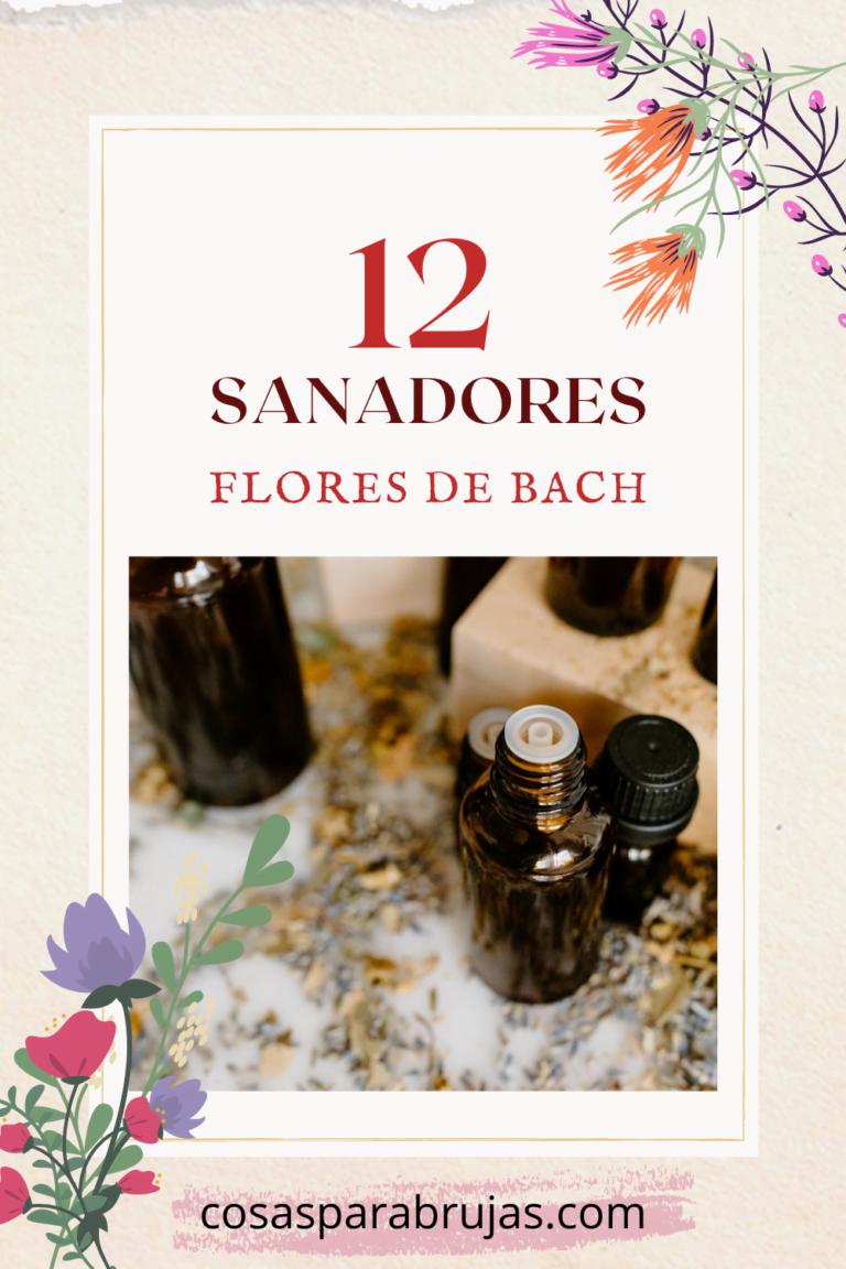 los 12 sanadores de las flores de bach